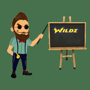 Wildz Online Casino Test