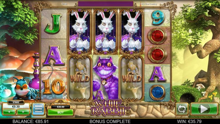 white rabbit highest rtp