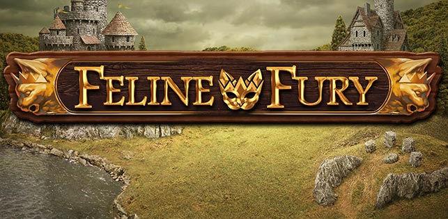 feline fury-slot review