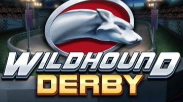 Wildhound-Derby-play n go