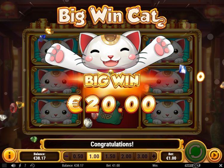 big-win-cat-play-n-go-big-win