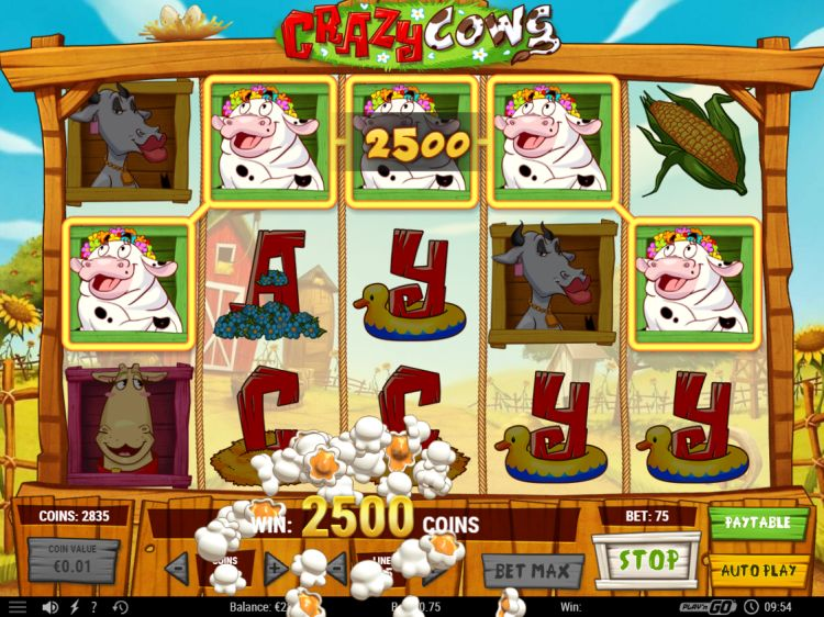 crazy-cows-slot-review-big-win