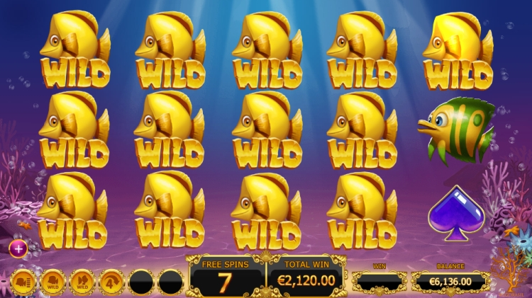 golden-fish-tank-slot-bonus big win