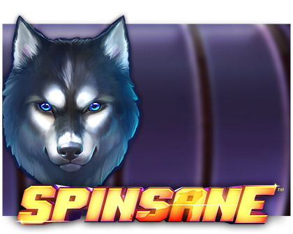 spinsane-slot review