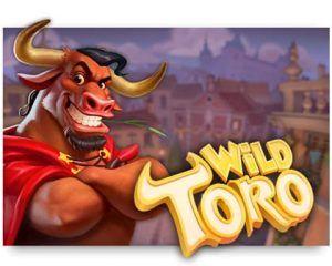 top 10 best elk studios slots wild toro