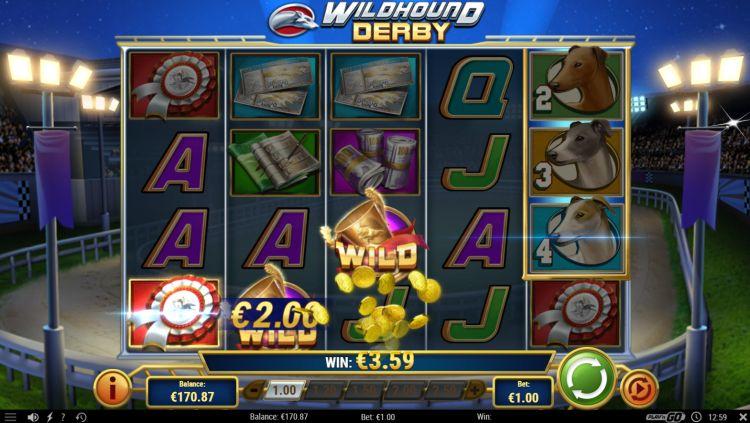 wildhound-derby-slot-review-playn-go-2