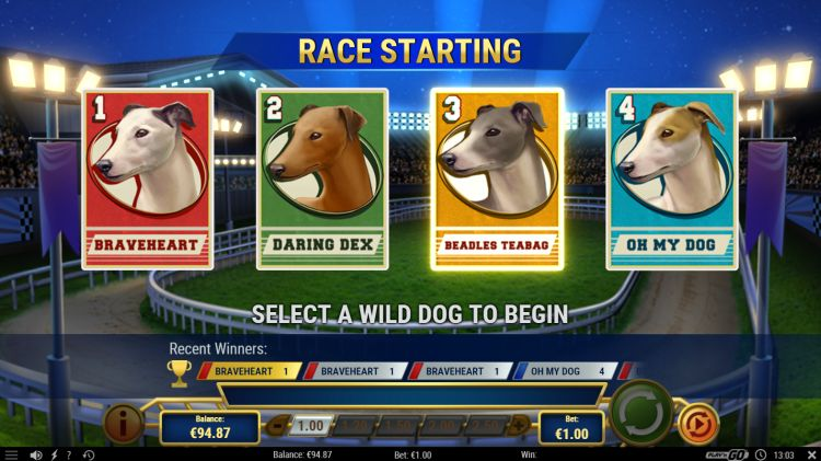 wildhound-derby-slot-review-playn-go-bonus-2