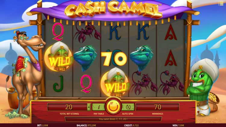 Cash Camel review isoftbet win