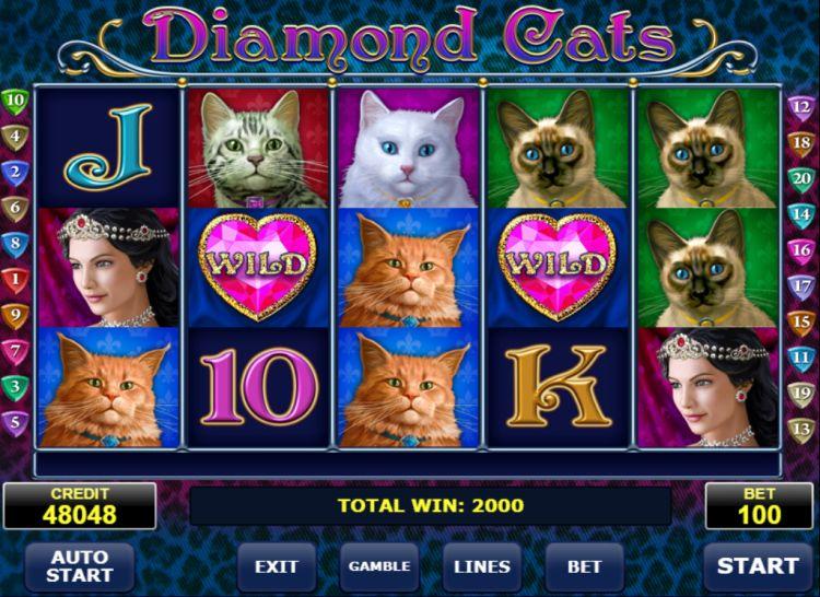 Diamond cats amatic big win