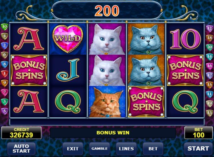 Diamond cats amatic bonus