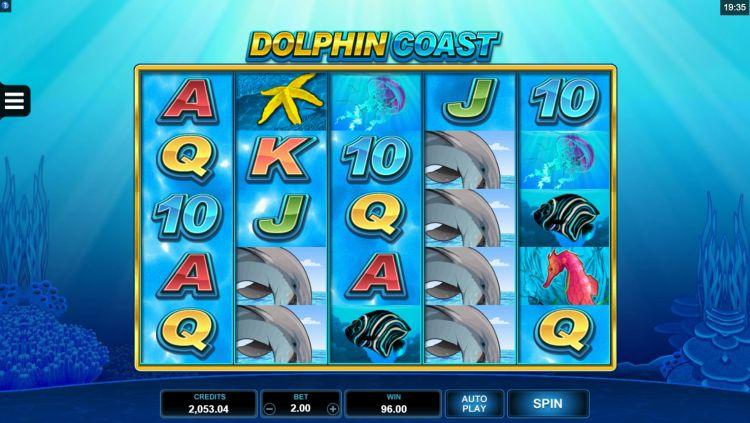 Dolphin Coast slot microgaming big win