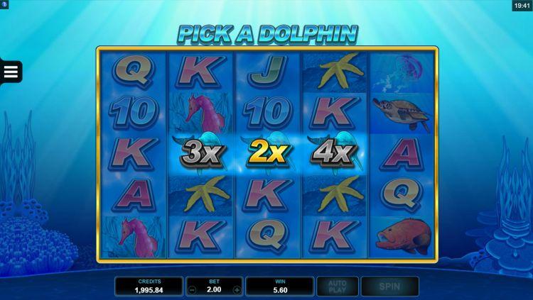 Dolphin Coast slot microgaming bonus feature