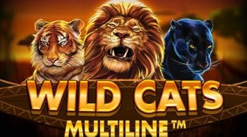 Wild cats multiline slot review red tiger gaming