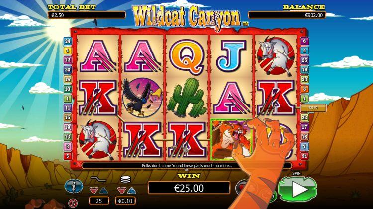 Wildcat canyon slot review big win