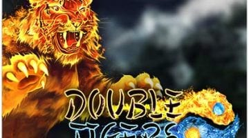double-tigers-slot review