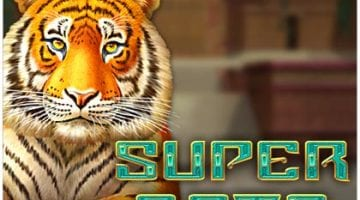 super-cats-amatic slot